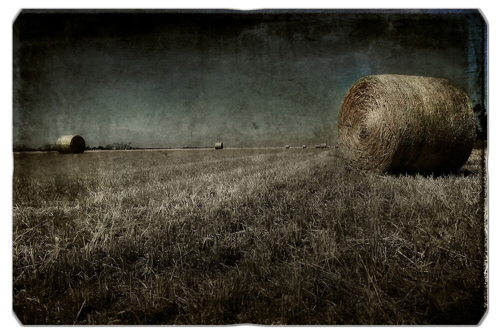 Bales by Wulff