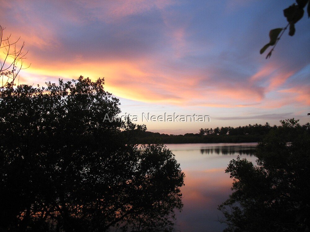Evening Coming by Amrita Neelakantan