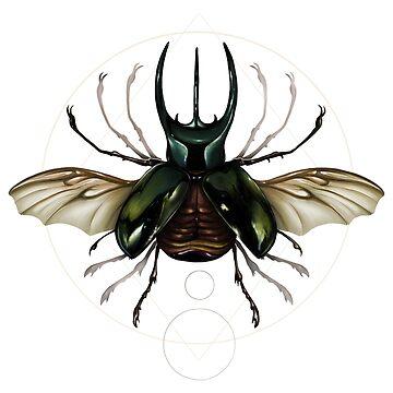 Vitruvian Beetle by opawapo