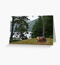 Stump With a View Greeting Card