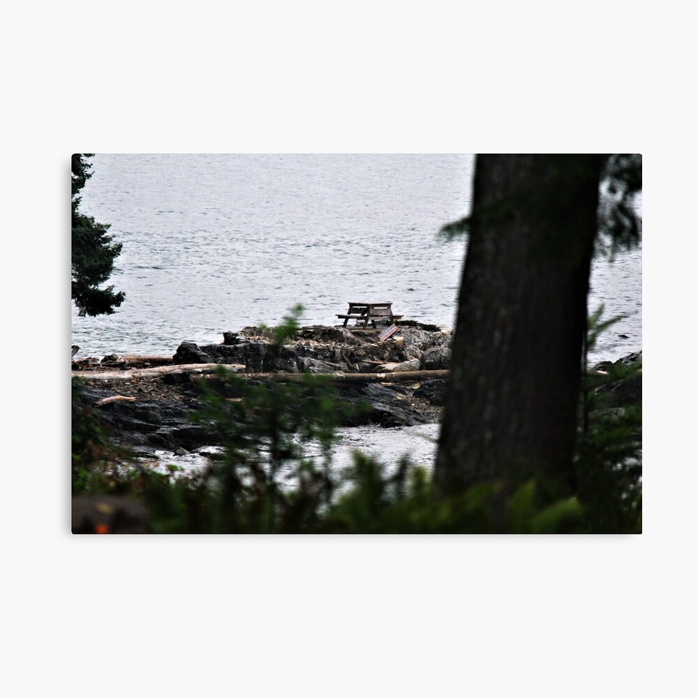 Secluded Picnic Canvas Print
