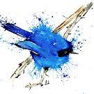 Blue Bird - Fairy Wren by Lisa Whitehouse