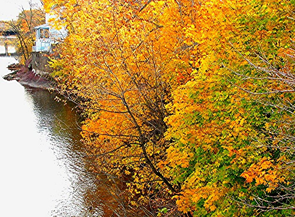 Perkiomen Fall View #2. by drumsandkeys