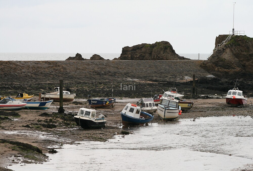 Boats at Bude by Iani