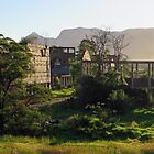 Ruins of the former shale oil refinery, Capertee Valley NSW by Tim Coleman
