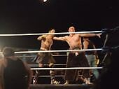 Action in the Ring by BigBuckwild