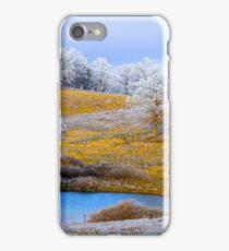 Winter Trees, Brannon Mt. NW Arkansas, USA iPhone Case/Skin