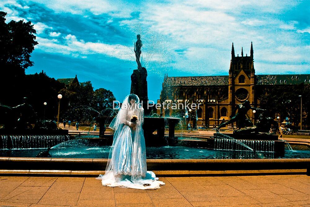 The bride part 5 by David Petranker