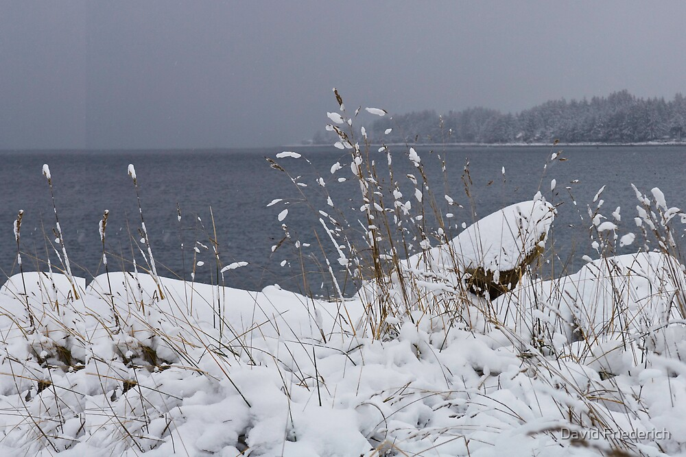 Snow at the Beach by David Friederich