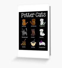 Harry Pawter Cute Kitten Potter Cats Greeting Card