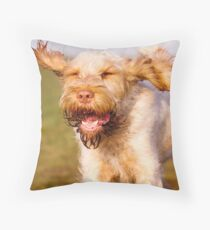 Orange and White Italian Spinone Dog in Action Throw Pillow