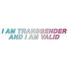 transgender pride  by twentyoneplots
