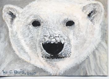 Polar Bear Face   ACEO by mmdstudios