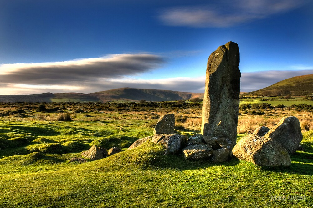 Preseli Blue Stones by Mark Guest