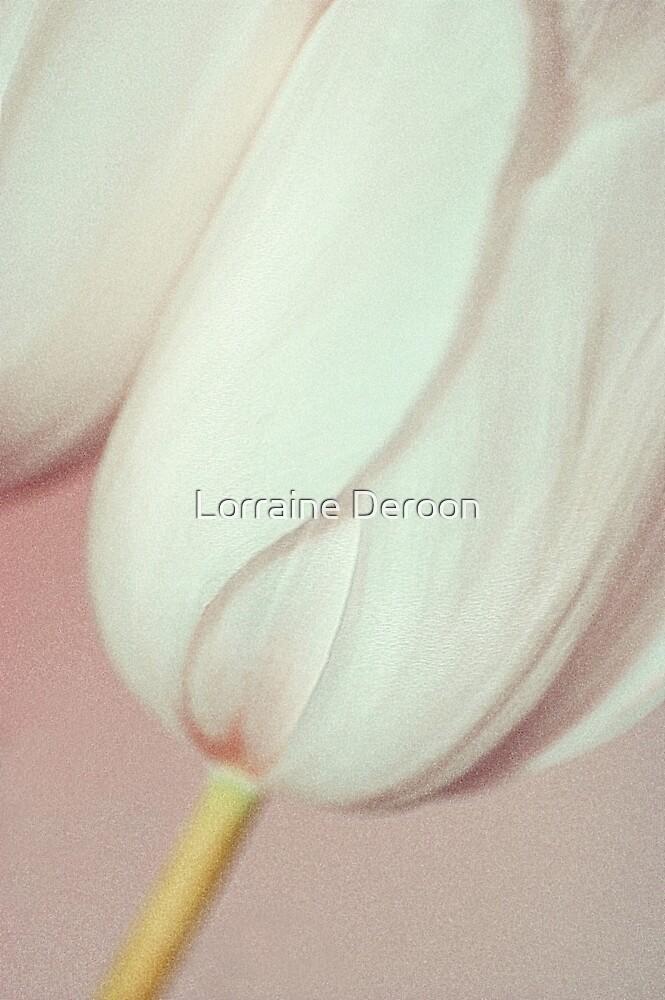 Softly Pink by Lorraine Deroon