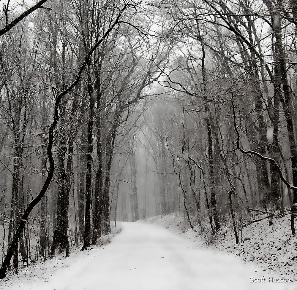 Second Snow by Scott  Hudson