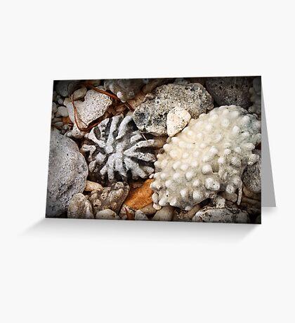 Shore thing II : rocks Greeting Card