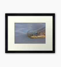 Silent Approach Framed Print