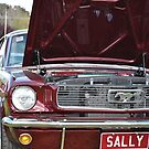 Mustang Sally by wiccanrider