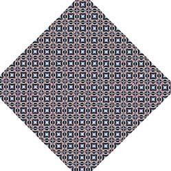 Kaleidoscope #5 by William Douglas Hill