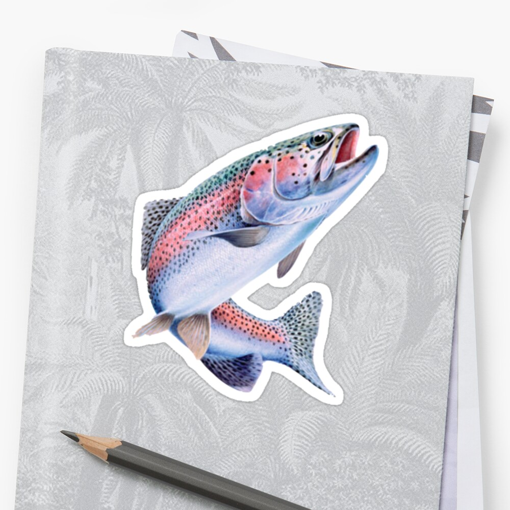 Rainbow Trout Fish by lucaswilliams