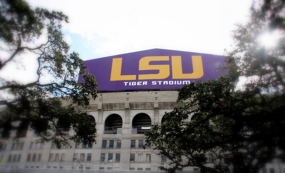 Tiger Stadium at Louisiana State University by seagrl44