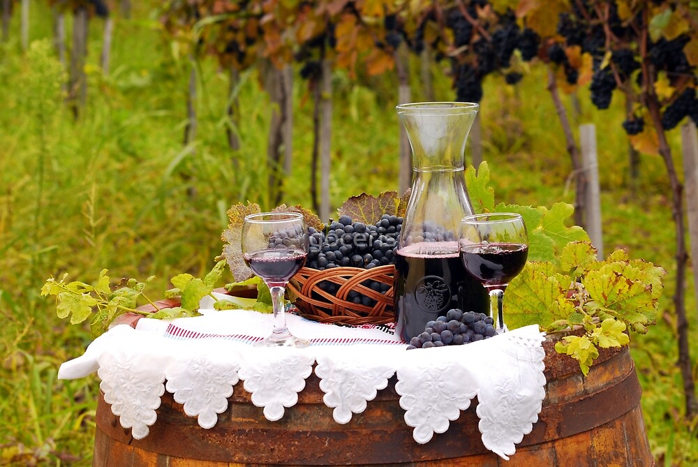 Red wine and grape in vineyard by goceris