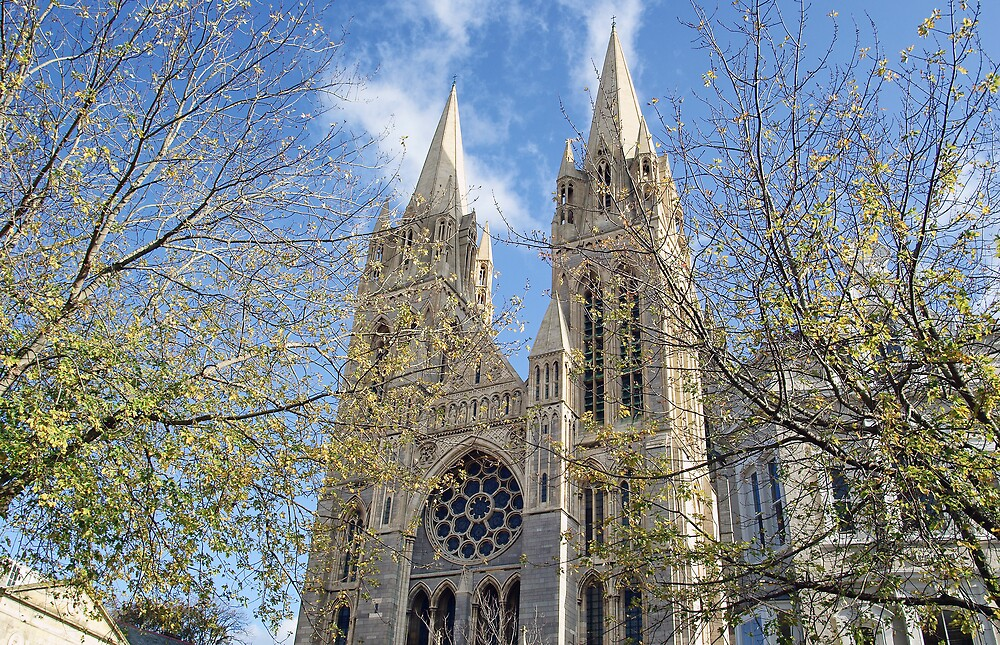 Truro Cathedral by David Wilkins