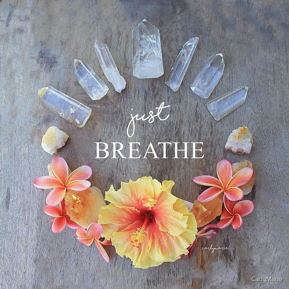 Just Breathe - Hibiscus Mandala by CarlyMarie