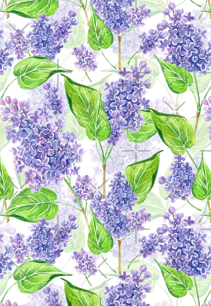 Watercolor lilac flowers by Katerina Kirilova