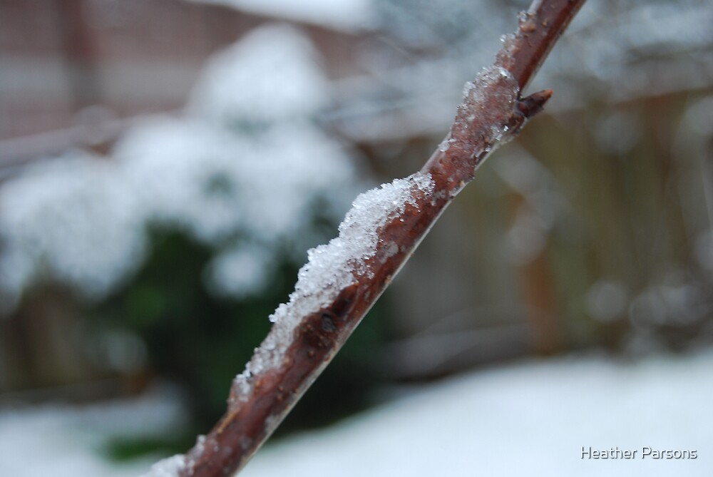 Snow Stick by Heather Parsons