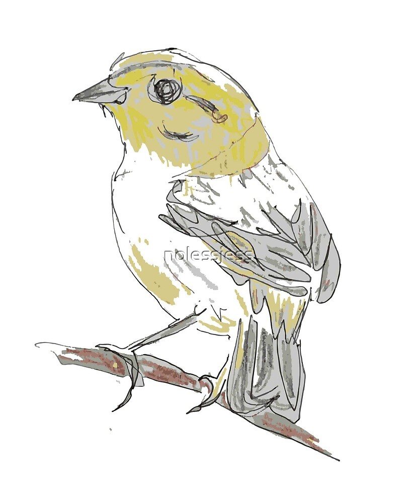 Yellowhammer by nolessjess