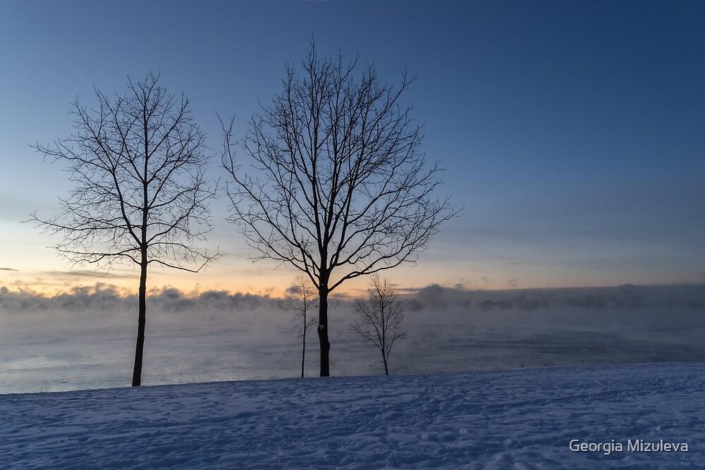 Freezing Blue Hour on Lake Ontario by Georgia Mizuleva