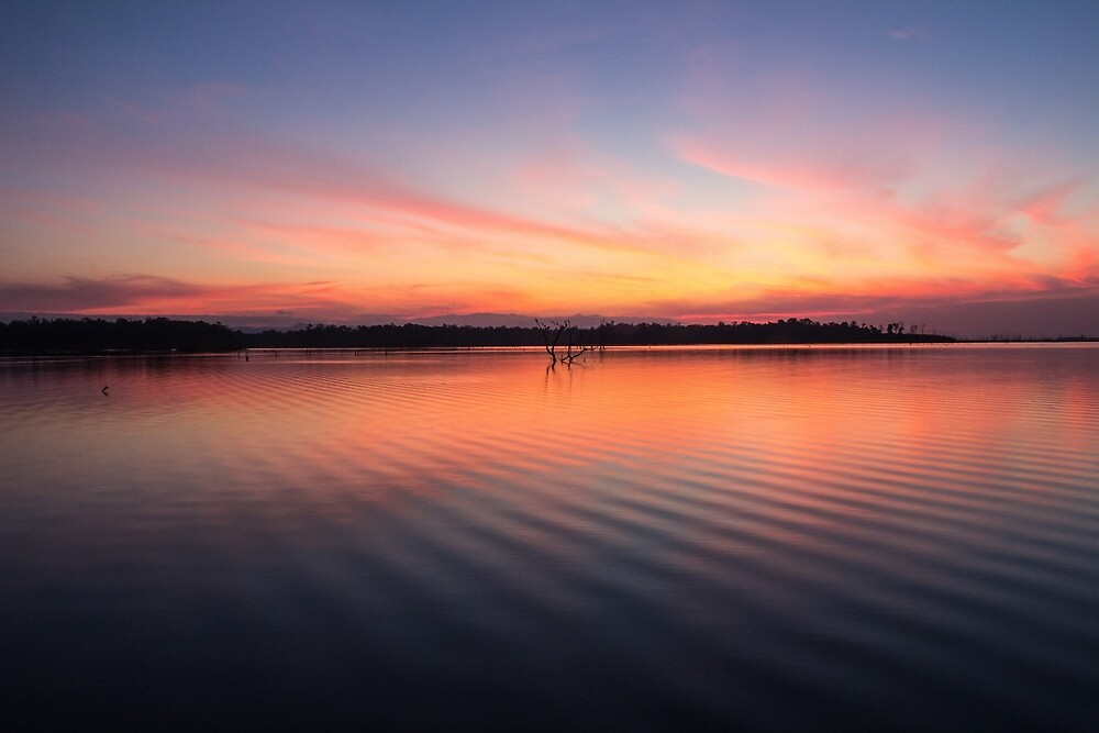 Beautiful lake at summer sunset by PRODUCTPICS