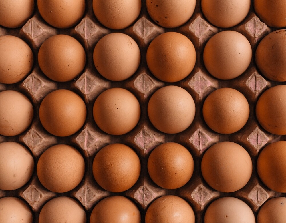 Brown eggs pattern by PRODUCTPICS