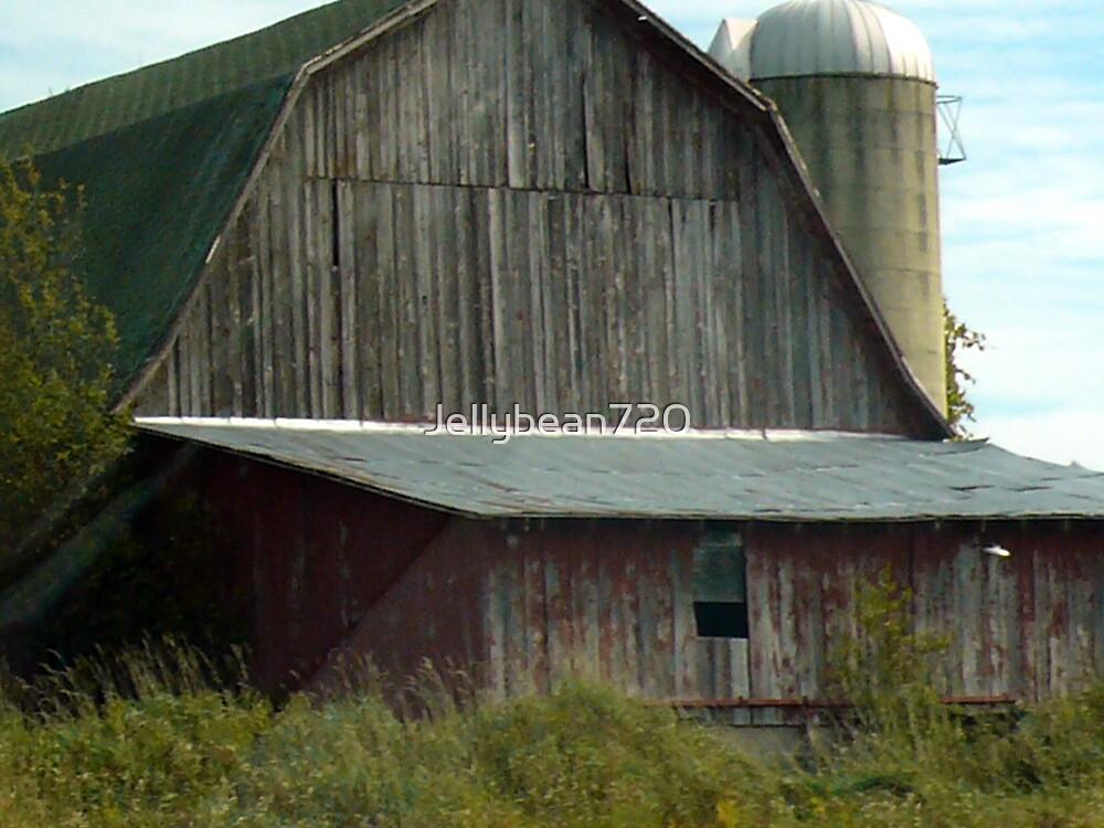 Old Barn by Jellybean720