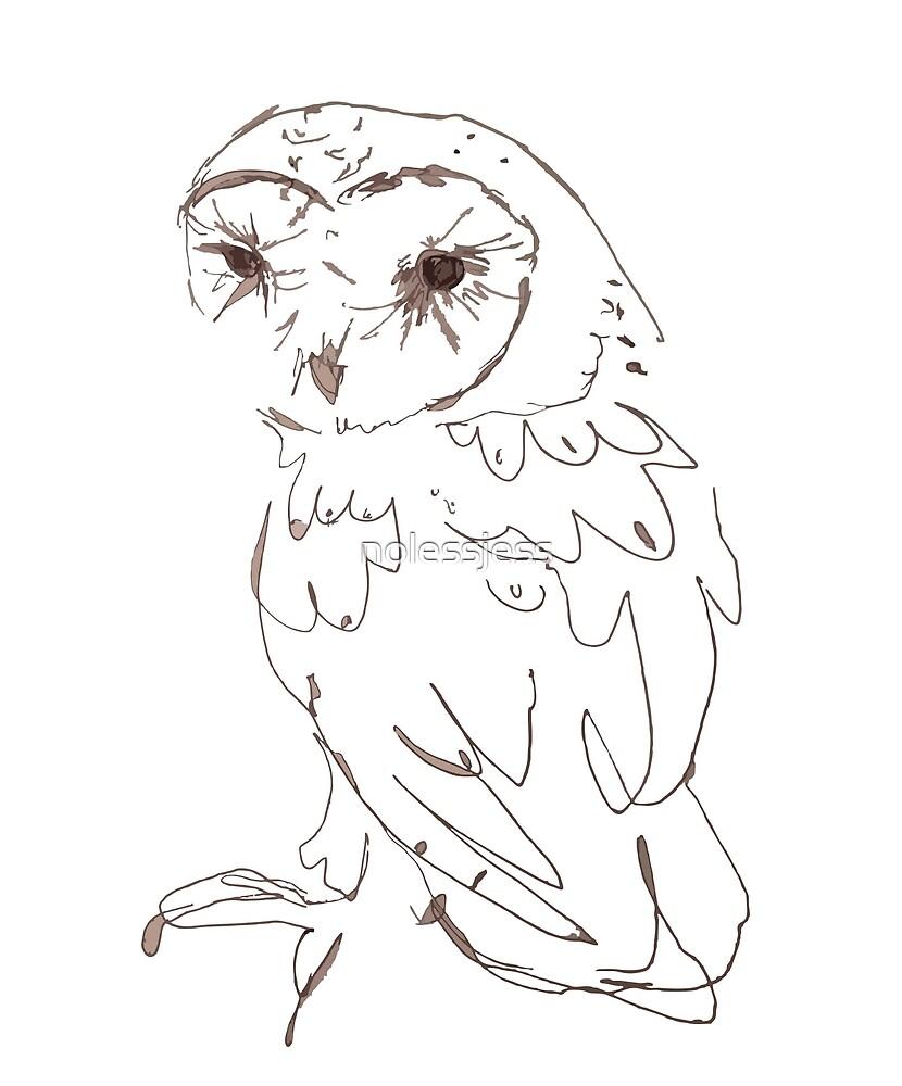 Barn Owl 2 by nolessjess