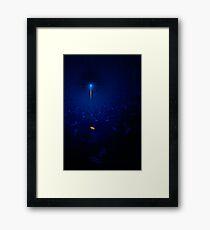 Apophysis Star Framed Print