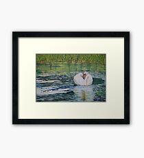 River Nene Swan Framed Print
