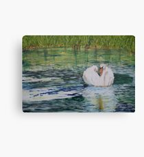 River Nene Swan Canvas Print