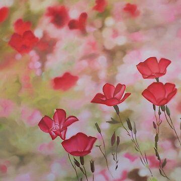 Pink Rhapsody by AlexBilbija