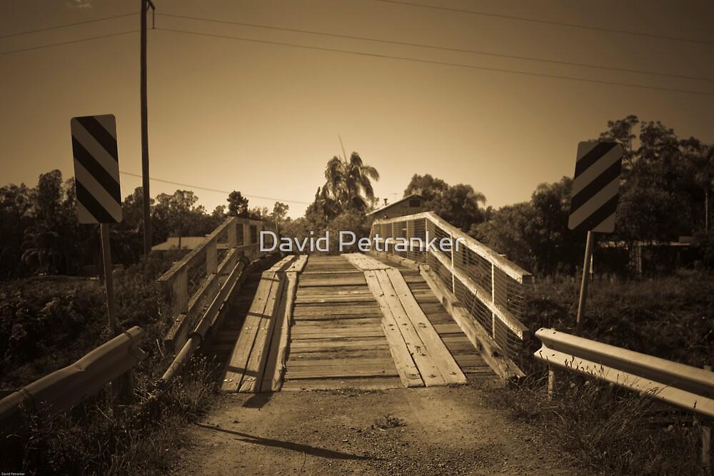 Telegraph Point Bridge by David Petranker