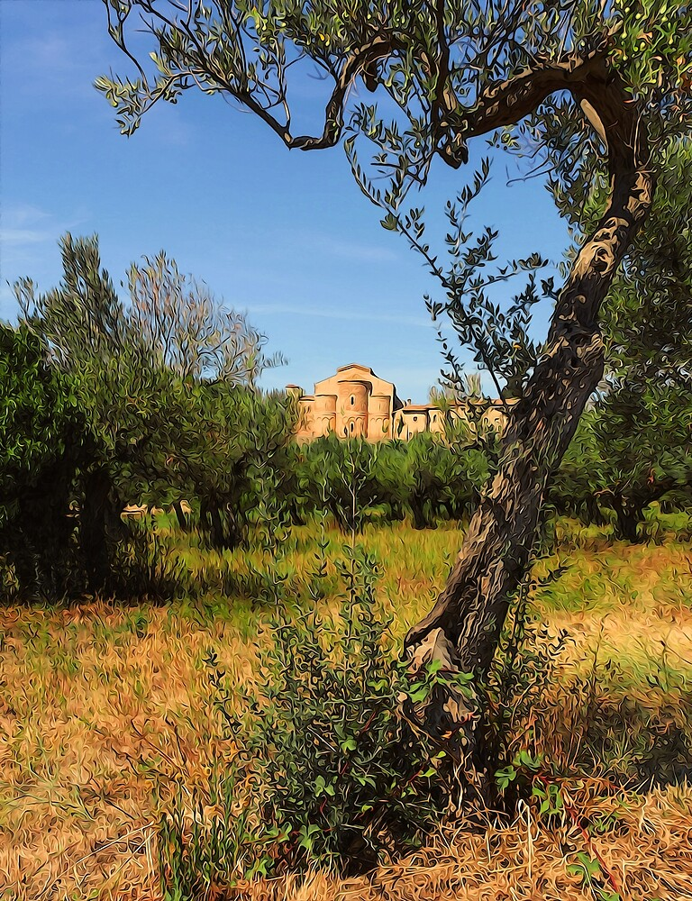 Italy, olive trees and an ancient abbey by Andrea Mazzocchetti