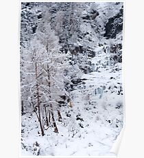 Icefall Poster