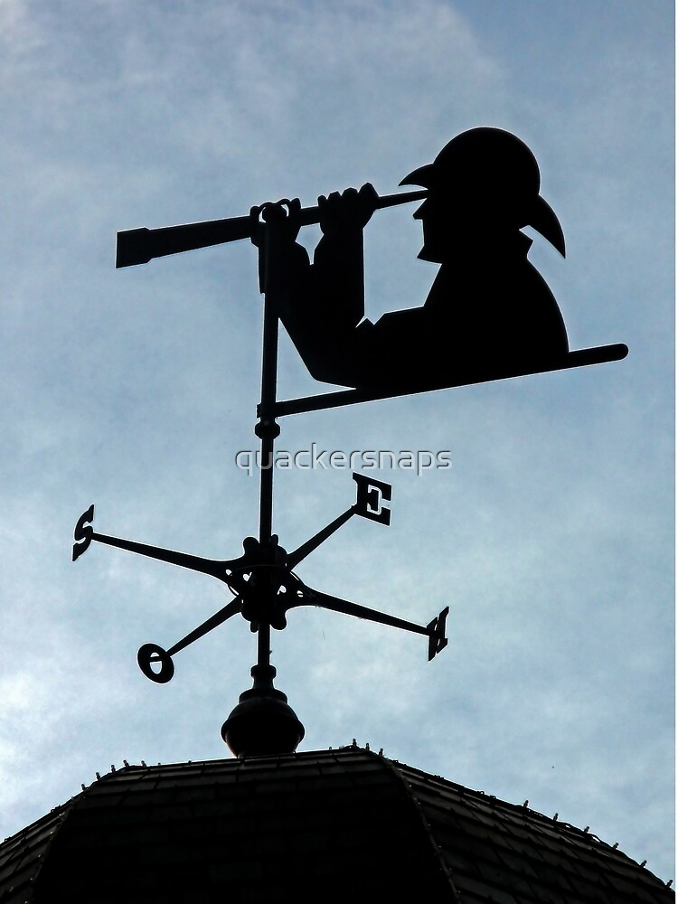 Weather Vane by quackersnaps