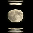 Full Moon Night  by solareclips~Julie  Alexander