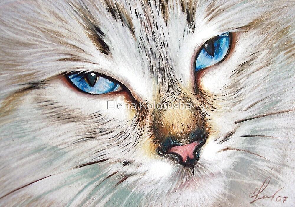 Snow Cat by Elena Kolotusha