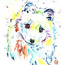 Arctic Fox by Lisa Whitehouse