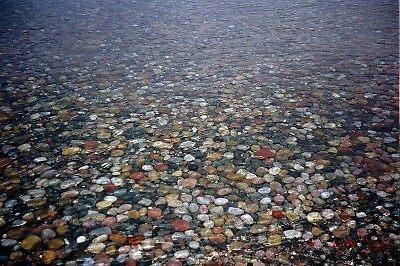 Colorful Carpet by beachbro
