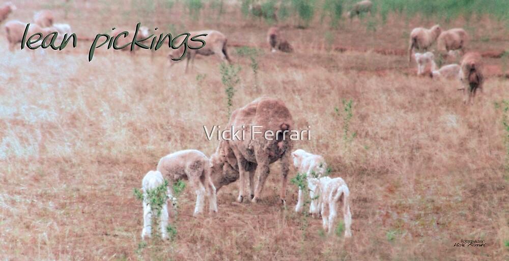 Lean Pickings © Vicki Ferrari Photography by Vicki Ferrari